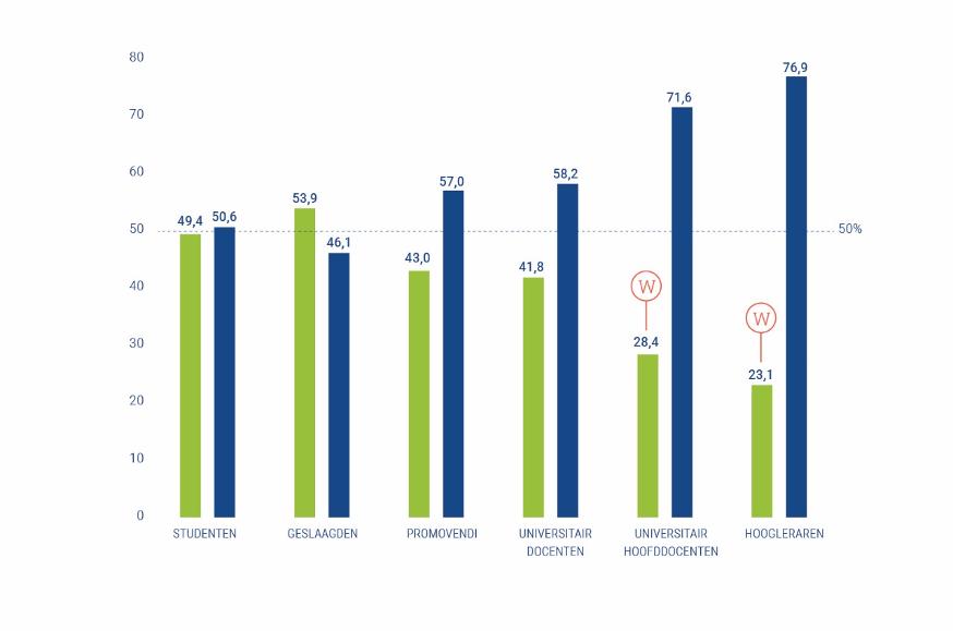 Grafiek van genderverhouding aan universiteiten in Nederland.